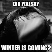 Crow Meme - curious crow memes quickmeme
