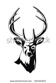 deer stock vector 490181128 shutterstock