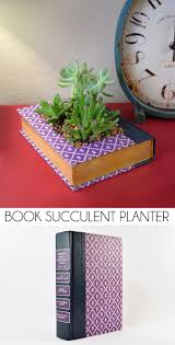 succulent planter book succulent planter dream a little bigger