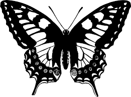 clipart butterfly 13