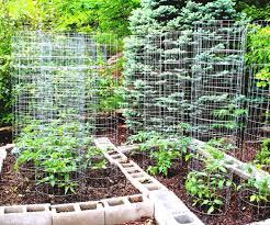 inspirational impactful mor earth news vegetable garden planner
