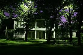 Moonlighting Landscape Lighting 2 Really Cool Landscape Lighting Ideas For Your Front Yard R A
