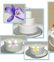 design a cake wedding cake design software from topplestone