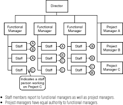 functional managers reader