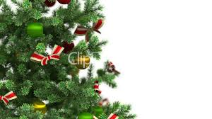 beautiful christmas tree close up on white background hd 1080
