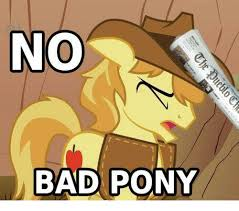 Pony Memes - no bad pony bad meme on me me
