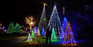 niagara falls christmas lights things to do in niagara falls this winter hojo by the falls