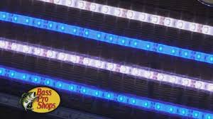 Led Flexible Light Strip by Bass Pro Shops Flexible Led Lighting Strips Youtube