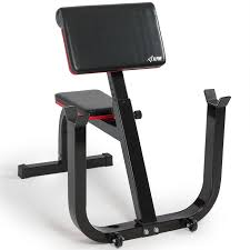 Learn Bench Preacher Curl Weight Bench Seated Arm Isolated Barbell Dumbbell