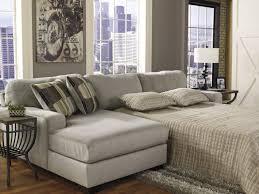 Bed Ideas  Sleeper Sofa Mattress Inspiring Living Spaces Sofa Bed - Mattresses for sofa sleepers 2