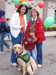 Comfort Dogs Certification 63 Best Therapy Dog Images On Pinterest Therapy Dogs Service