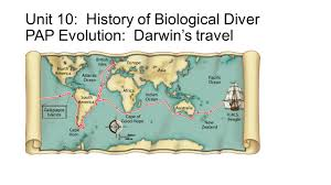 unit 10 history of biological diver pap evolution darwin u0027s