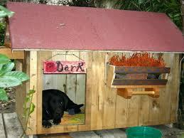 cucce x cani tutte le offerte cascare a fagiolo