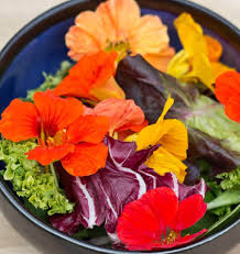 List Of Flowers by List Of Edible Flowers