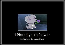 espurr flower meme by 42dannybob on deviantart