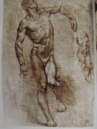 Google Human Anatomy Gottfried Bammes The Artist S Guide To Human Anatomy Google
