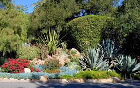 drought tolerant landscapes colorful or boring ramblings from