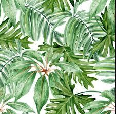 aliexpress buy 2017 fashion banana leaves tree chiffon