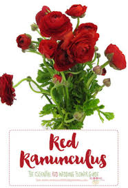 Red Wedding Bouquets Names And Types Of Red Wedding Flowers With Seasons Pics