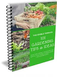 Garden Tips And Ideas 101 Gardening Tips Ideas For Vegetable Gardeners
