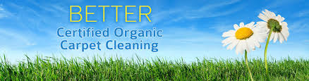 Upholstery Delaware South Jersey Organic Carpet Cleaning U0026 Upholstery Cleaning