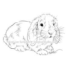 digital download bunny rabbit sketch digital stamp rabbit clipart