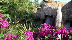 imagenes de jardines pequeños con flores casa humilde pero jardin bonito mas palapa maya y plantas y flores