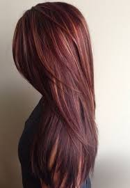 silver hair with low lights image result for mahogany hair with hair pinterest mahogany