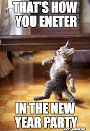 Happy New Year Cat Meme - happy new year memes best collections of funny memes 2018 happy