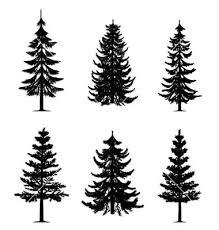 small pine tree design