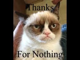 Grumpy Cat New Years Meme - new years resolutions meme guy