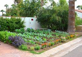 Small Home Vegetable Garden Ideas by Garden Ideas Arizona Stone Pillars W Planters Desert Landscaping