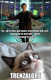 Funny Doctor Who Memes - thank you grumpy cat hahahaha pinterest grumpy cat cat and