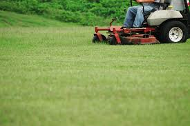 story idea the importance of lawn care
