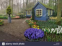 Small Cottage Small Cottage Flower Shop Keukenhof Gardens Lisse Netherlands
