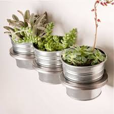 best 25 wall mounted planters ideas on pinterest hanging
