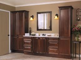 american standard bathroom cabinets interior small bathroom cabinet ideas toilet american standard