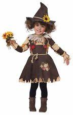 Pumpkin Costume Halloween Pumpkin Costumes Ebay