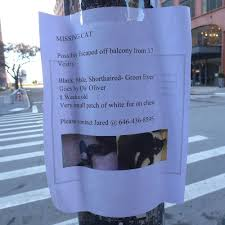 Steven Sclaroff by Tribeca Citizen Seen U0026 Heard Tipsy Shanghai Restaurant Report