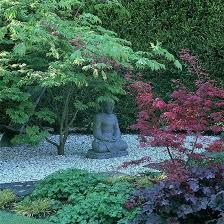 Zen Garden Design The 25 Best Zen Garden Design Ideas On Pinterest Zen Gardens
