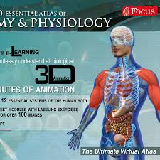 Anatomy And Physiology Muscle Labeling Exercises Focus Medica Youtube