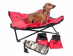 designer picks dog chairs networx