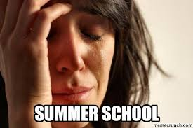 Summer School Meme - school sucks