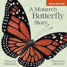 a monarch butterfly by islandport press