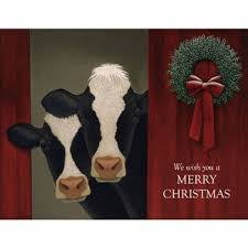 boxed cards cows artist lowell herrero