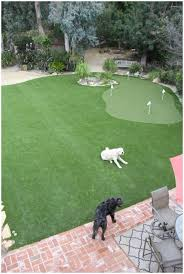 Small Backyard Putting Green Backyards Cozy Backyard Green Summer Park Garden With Blue Sky