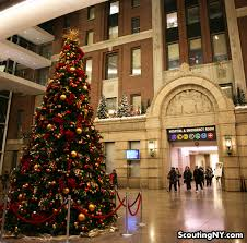 happy holidays from bellevue hospital scouting ny