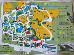 San Francisco Zoo Map by Auckland Zoo Photo Galleries Zoochat