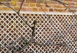 grange flat top alderley trellis kebur