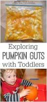 the mess free way to explore pumpkin guts with toddlers sensory